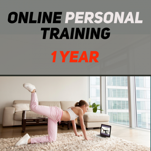 Online Personal Training 1 Year